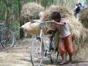 Al món hi ha 152 milions de nens i nenes treballant en lloc d'anar a escola