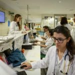 Aïllament, estudi i nervis per acabar sent especialista: històries del MIR